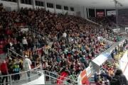 České Budějovice vs Vsetín - fanoušci